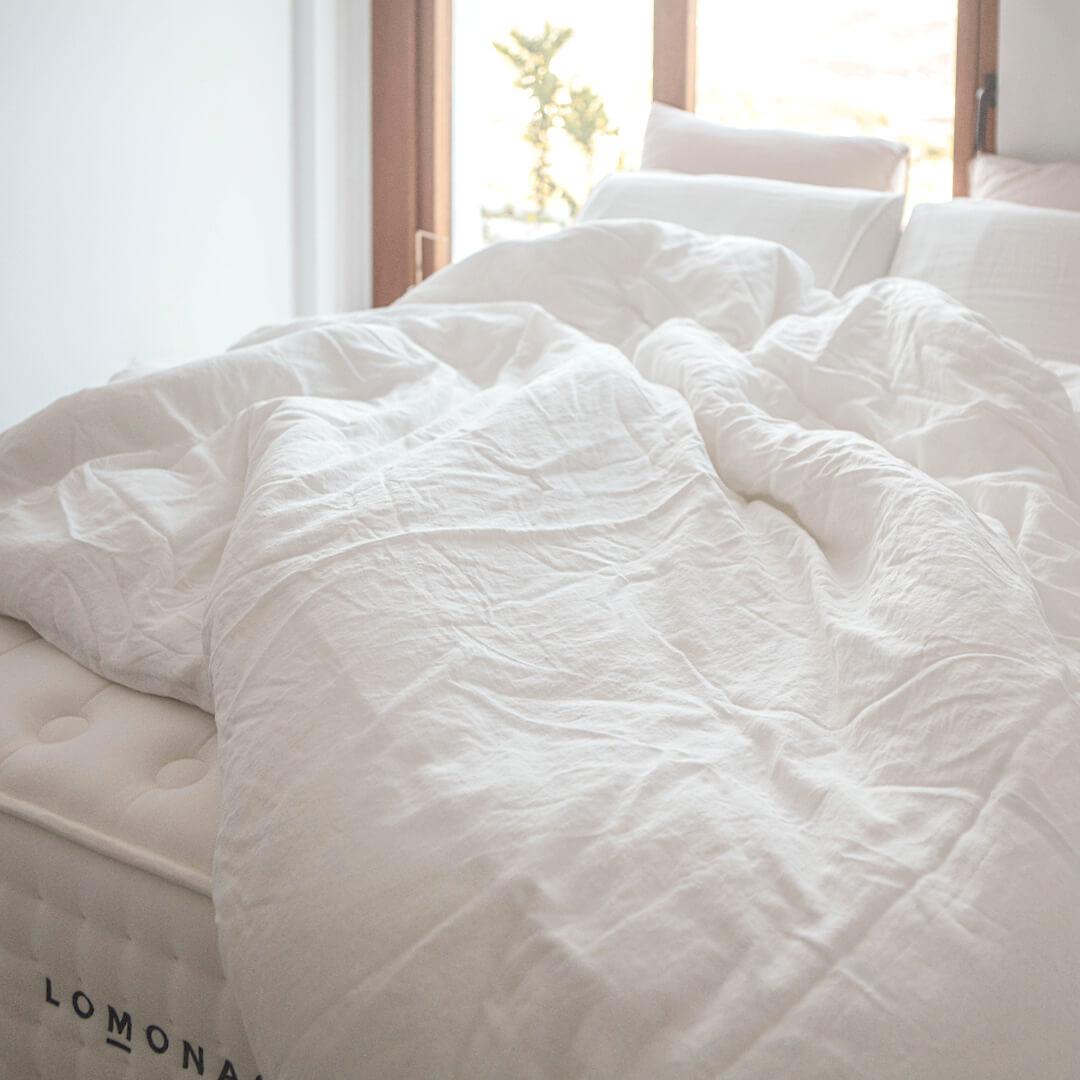 ¿Qué pasa mientras dormimos? La ciencia del sueño